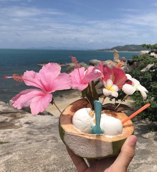 Kokosnuss-Eis