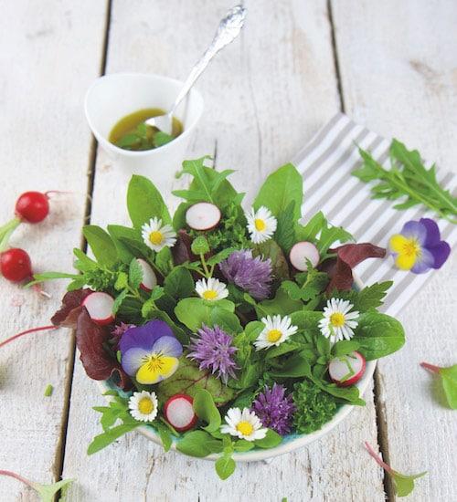Rohkost Rezept: Frühlings-Salat Mit Wildkräutern - Für Eine Gesunde Ernährung