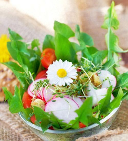 Rohkost Rezept: Frühlingssalat - Für Eine Gesunde Ernährung