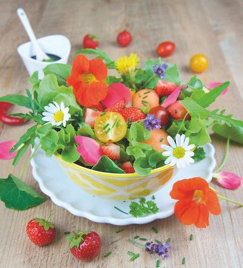 Rohkost Rezept: Sommersalat Mit Blüten - Für Eine Gesunde Ernährung