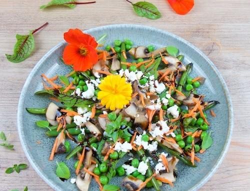 Bohnen-Pilz-Salat