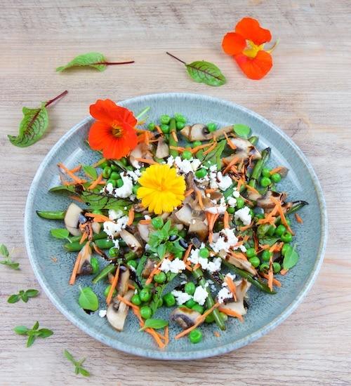 gesunde-salate-bohnen-pilz-salat