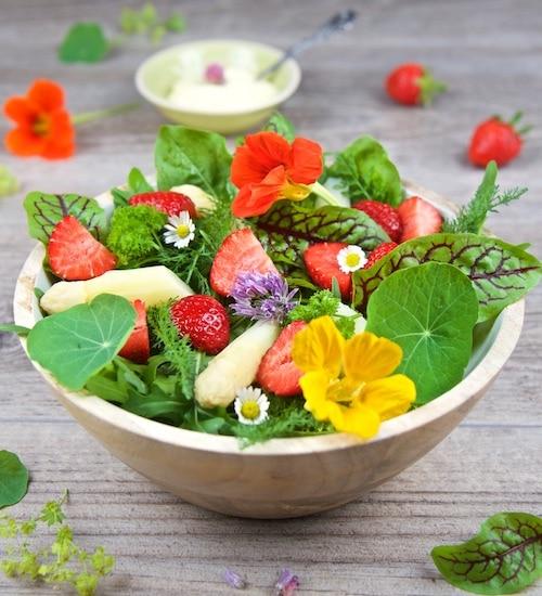 gesunde-salate-fruchtiger-wildkraeutersalat-mit-spargel-und-erdbeeren
